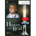 【DVD】 天国はほんとうにある