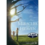 MIRACLE from HEAVEN 天国からの奇跡