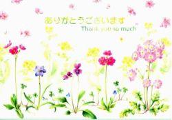 聖句入りグリーティングカード CD-346 「ありがとうございます」