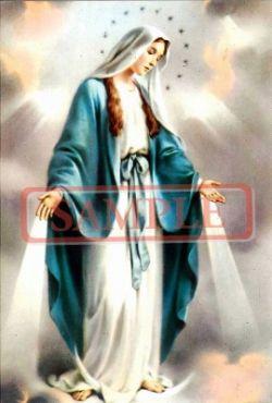 イタリア製 ポストカード 「無原罪聖母」